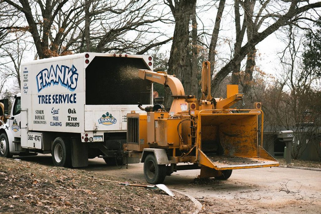 Alamo-McAllen Tree Trimming and Stump Grinding Services-We Offer Tree Trimming Services, Tree Removal, Tree Pruning, Tree Cutting, Residential and Commercial Tree Trimming Services, Storm Damage, Emergency Tree Removal, Land Clearing, Tree Companies, Tree Care Service, Stump Grinding, and we're the Best Tree Trimming Company Near You Guaranteed!